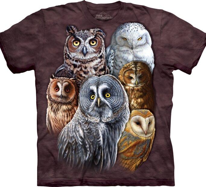 Owls Adult