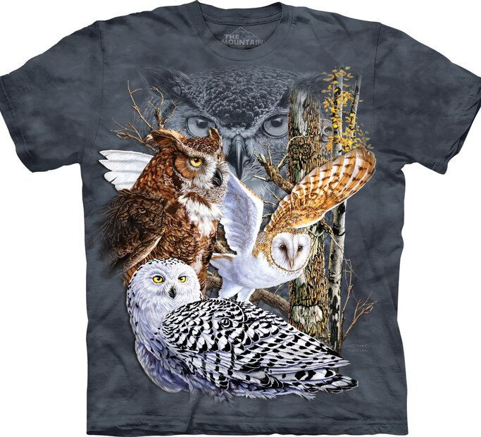 Find 11 Owls Adult