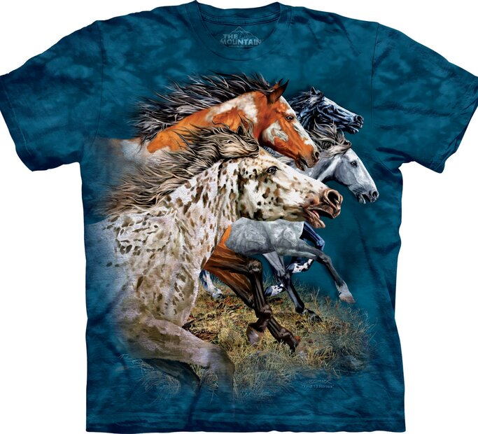 Find 13 Horses Adult