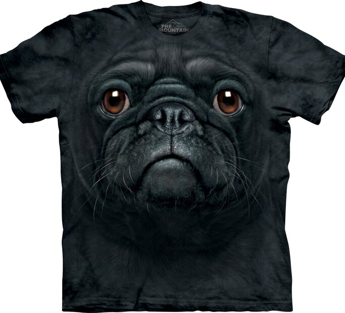 Black Pug Dog Face