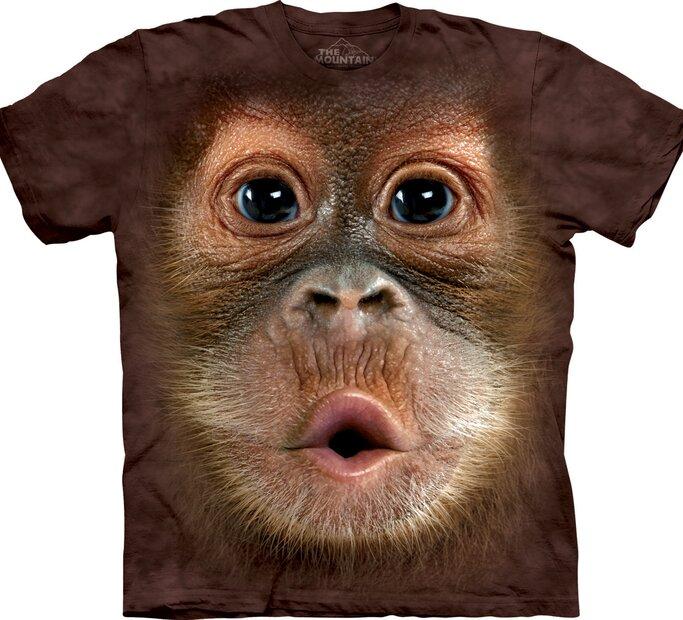 Big Face Baby Orangutan Adult