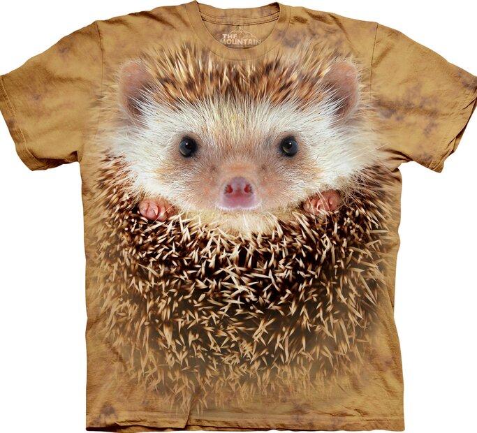 Big Face Hedgehog Adult