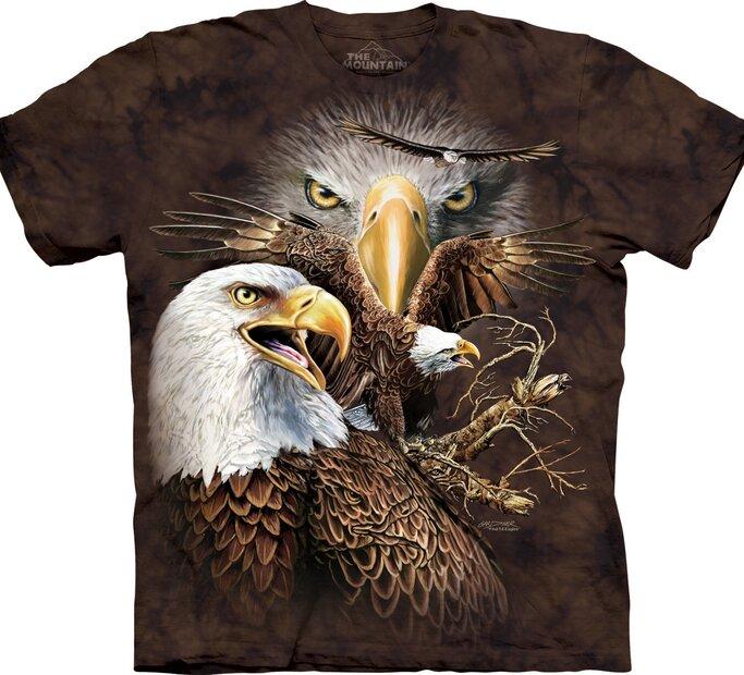 Find 14 Eagles Adult