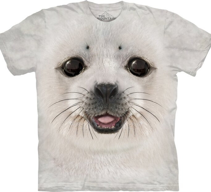 Big Face Baby Seal