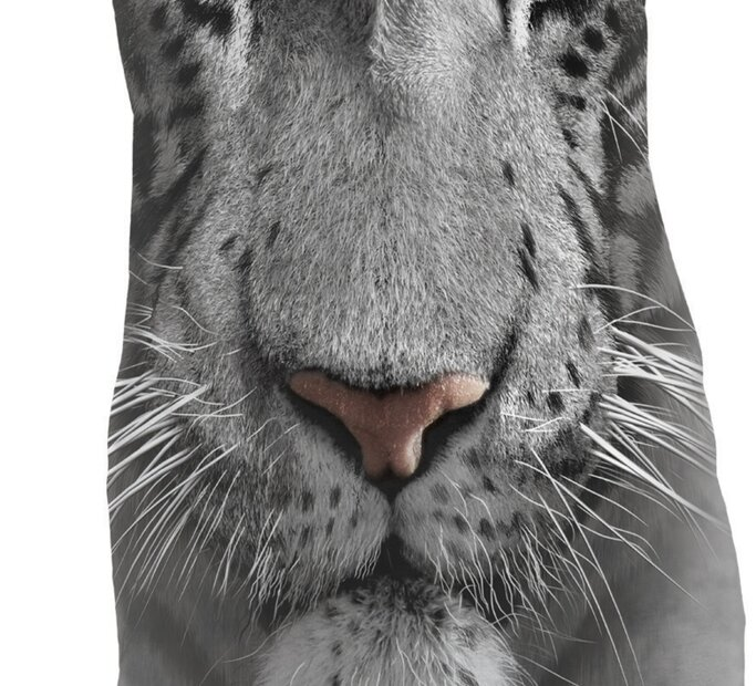 White Tiger Face  Adult