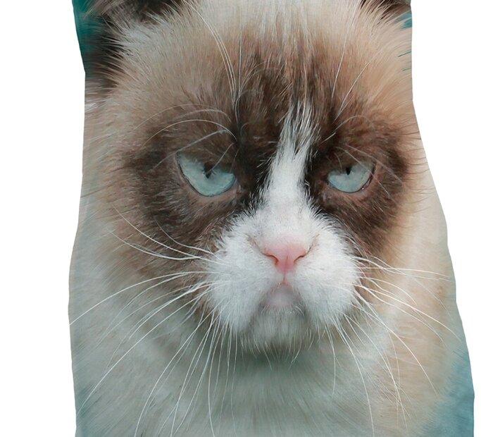 Grumpy Cat  Adult