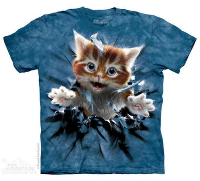 T-Shirt Kätzchen Ginger