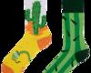 Lifestyle photo Good Mood Regular Socks Cactus