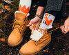 Geschenktipp Lustige Socken Fuchs