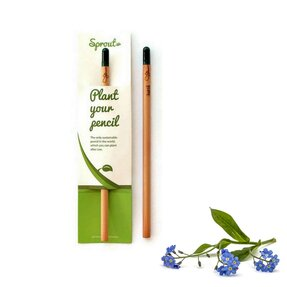 Plant Your Pencil – Forget Me Not
