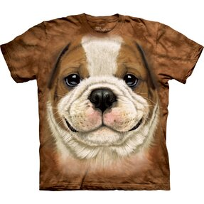 Brown T-shirt Bulldog Puppy