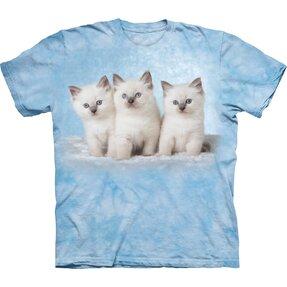 Cloud Kittens Adult