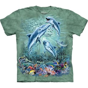 Find 12 Dolphins Adult