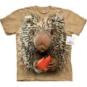 Baby Porcupine          OL