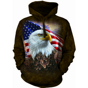 Hoodie Profile of American Eagle