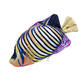 Pillow Regal Angelfish – 56 cm