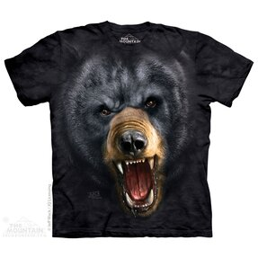 Aggressive Nature:Black Bear