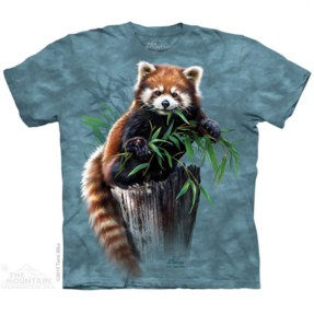 Red Panda with Bamboo Kids