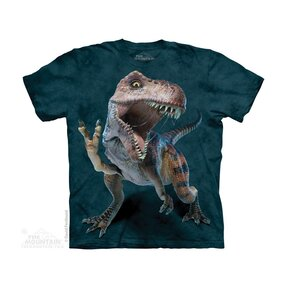 Kinder T-Shirt Dinosaurier Frieden