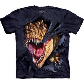 Kinder T-Shirt Durchbruch-T–Rex