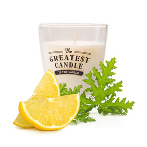 Glass Insect Repellent Candle Citronella