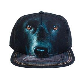 Kappe Gesicht des Schwarzen Labradors