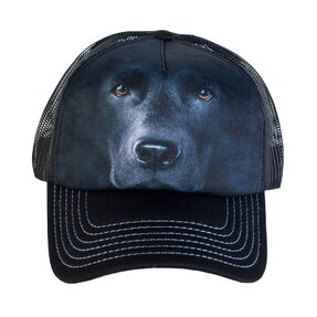 Kappe mit Netz Gesicht des schwarzen Labradors