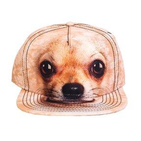 Kappe Chihuahua