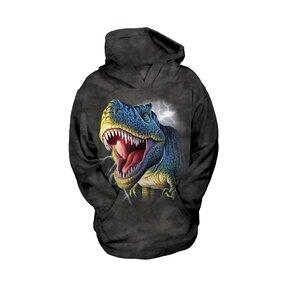 Kinder Sweatshirt mit Kapuze Rex mit Blitzen