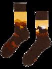 Regular Socks Wild Horses