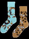 Vrolijke sokken Teckel
