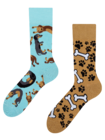 Živahne nogavice Jazbečar