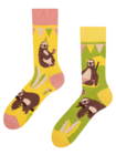 Regular Socks Party Sloth