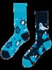 Regular Socks Polar Animals