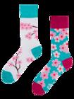 Regular Socks Sakura