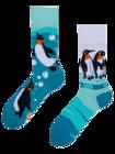 Wesołe skarpetki Pingwiny