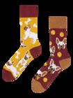Lustige Socken Französische Bulldogge