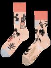 Veselé ponožky Pokojové rostliny