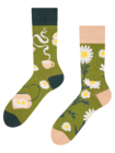 Regular Socks Chamomile Tea