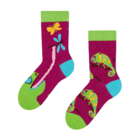 Kids' Socks Chameleon