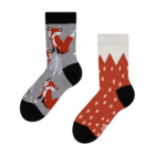 Kids' Socks Fox