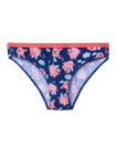 Women's Briefs Flying Pigs
