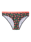 Women's Briefs Flamingos