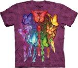 Rainbow Butterfly Dream