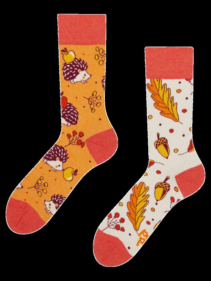 Rabatt Lustige Socken aus recycelter Baumwolle Herbstigel