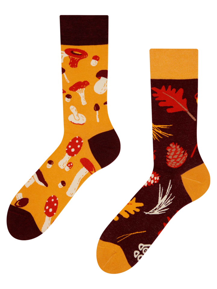 Lifestyle foto Vesele čarape Gljive
