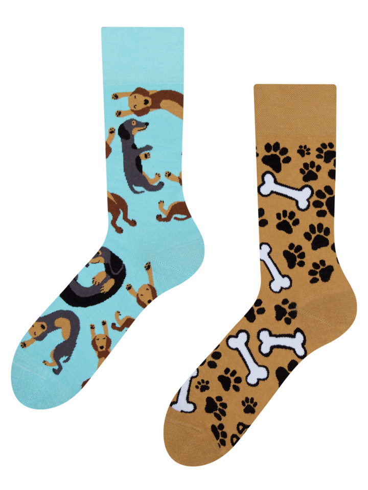 Original gift Regular Socks Dachshund
