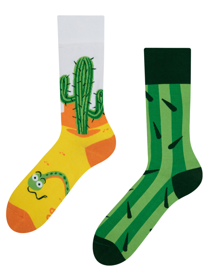 Lifestyle photo Regular Socks Cactus