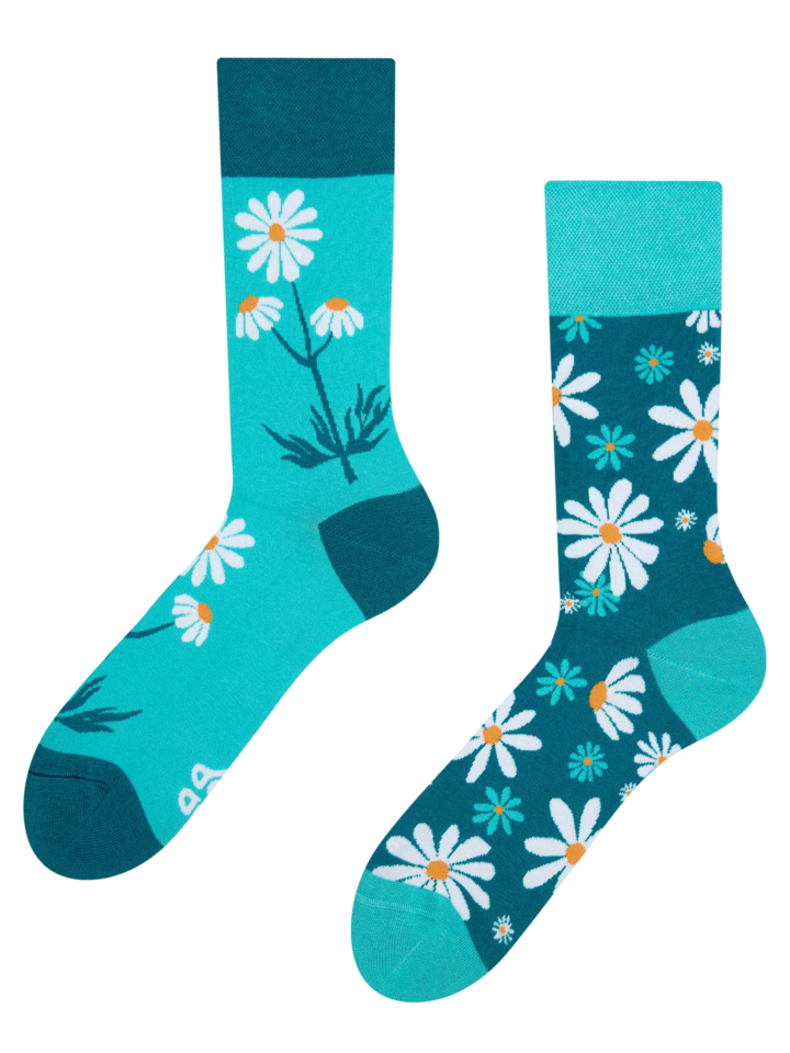 Looking for an original and unusual gift? The gifted person will surely surprise with Regular Socks Chamomile