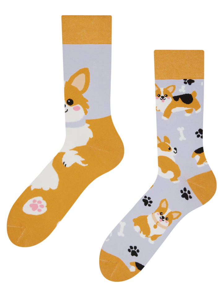 Looking for an original and unusual gift? The gifted person will surely surprise with Regular Socks Corgi Dog
